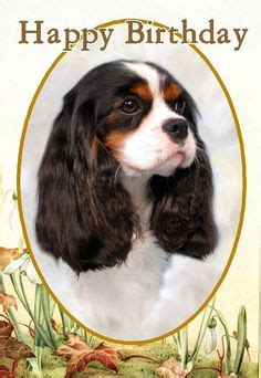 """Cavalier King Charles Birthday note cards are 5 1/2"""" x 4 1"""