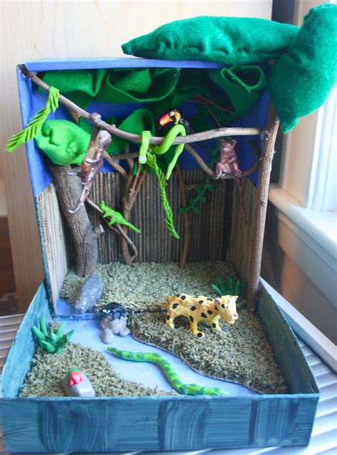 rainforest habitat complete! | This shows a selection of
